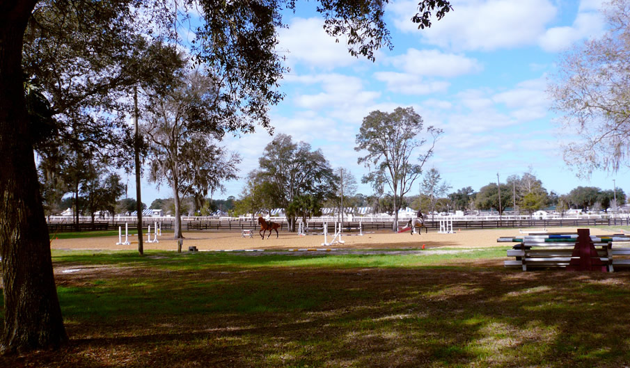 View of the HITS Arena from HITS Ocala Stalls Farm