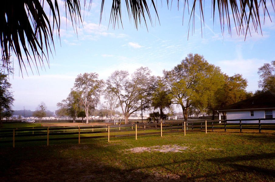 Paddock at HITS Ocala Stalls Farm